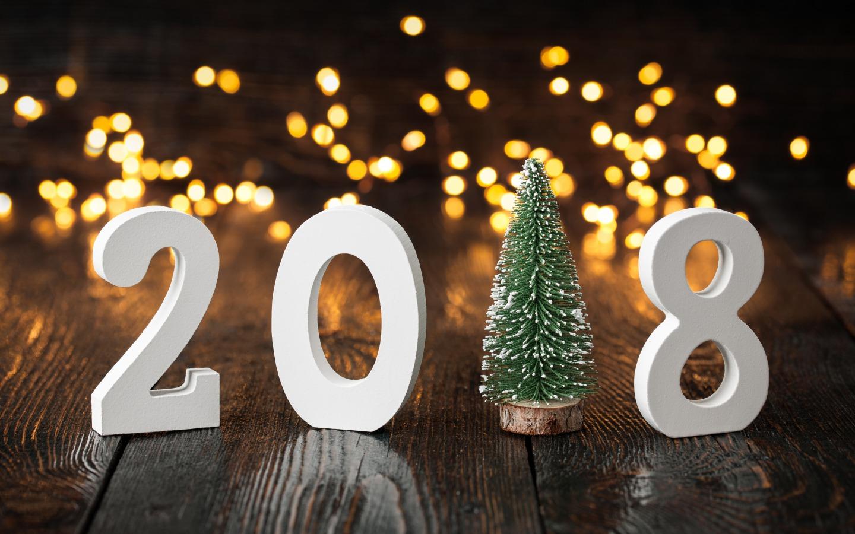 novyi-god-new-year-2018-prazdnik-elka-elochka