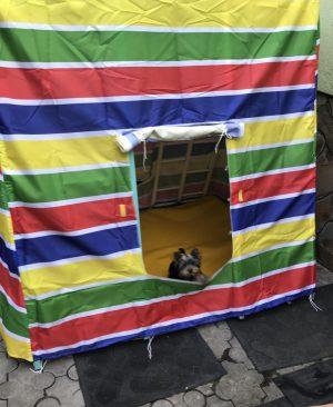 палатка-домик и навесное оборудование