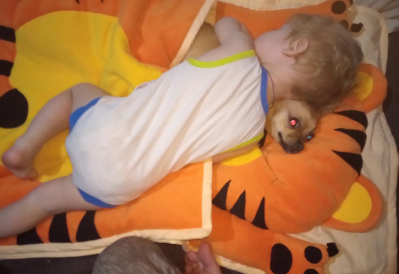 слипик Тигрёнок, детский спальник